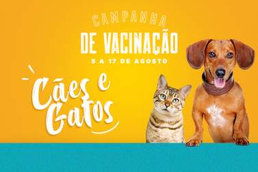 Campanha de Vacinação para Cães e Gatos inicia hoje (5) em Cajati