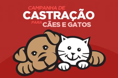 Sábado é dia da 3ª Campanha de Castração de cães e gatos