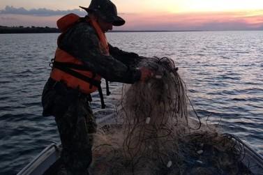 PM Ambiental apreende 3,7 toneladas de pescados e desativa fábrica clandestina