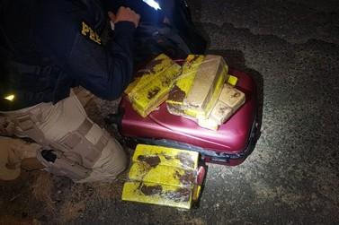 Jovem é presa com 21 kg de maconha em ônibus na Régis Bittencourt