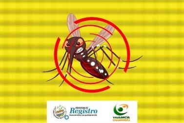 Dengue: Registro tem 256 casos confirmados nesta sexta-feira