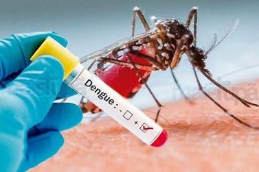 Registro informa quase 500 casos confirmados de dengue no município