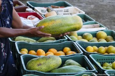 Quilombolas e caiçaras distribuem mais de 50t de alimentos para vulneráveis