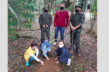 Operação Jequitibá é lançada em Dia da Árvore e Dia da Polícia Militar Ambiental