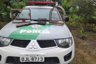 Polícia Ambiental faz apreensão de arma de fogo e várias espécies de aves