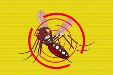 Casos de dengue em Registro chegam a 598 em 9 meses
