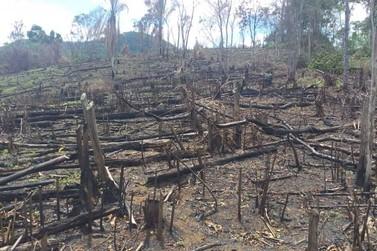 PM Ambiental aplica multa de R$ 28.627,50 por desmatamento