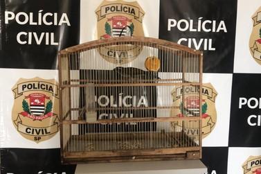 """Polícia Civil prende homem que ameaçou vizinho de morte em Iporanga"""""""