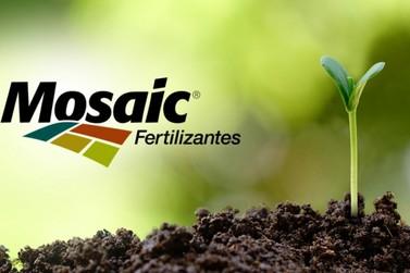 Mosaic Fertilizantes abre inscrições para Programa de Estágio