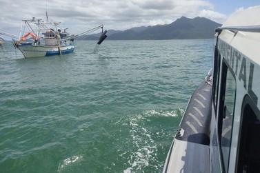 60 quilos de camarão sete barbas foram pescados ilegalmente
