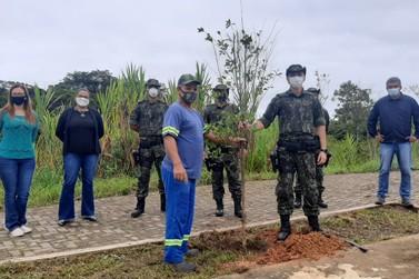 Polícia Ambiental inicia Operação Gaia em alusão à Semana do Meio Ambiente