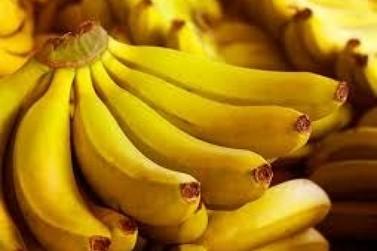 Exportação de banana-nanica de Registro bate recorde