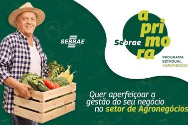 Sebrae Aprimora Agro lança segunda turma no Vale do Ribeira