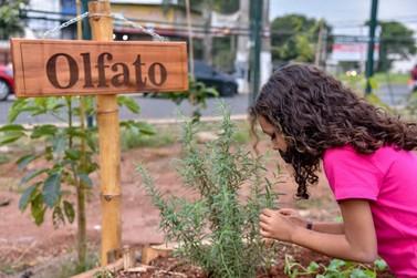 Prefeitura inaugura jardim sensorial no NAM