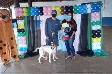 """Mais sete cães foram adotados em novo evento """"Audote"""""""