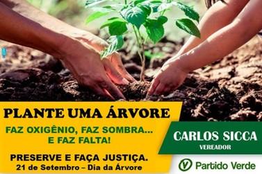 Respire melhor. Plante uma árvore!