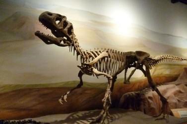 Nova espécie de dinossauro é descoberta em sítio paleontológico da região