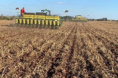 Plantio de soja no Brasil vai a 58,1%, mas segue atrasado