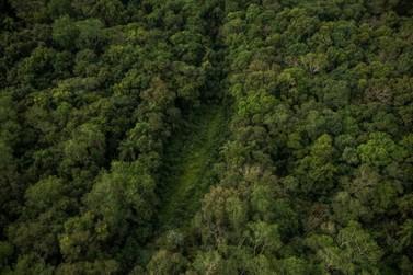 Estrada do Colono: Comissão dá parecer contrário e Paraná inicia nova cruzada