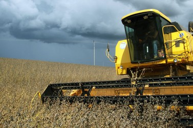 Safra de soja do Brasil deve somar 124,3 mi t em 2019/20