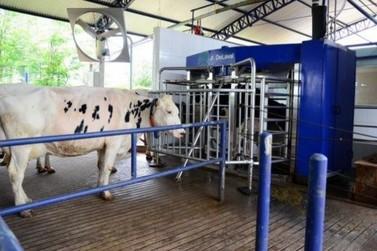 Show Rural vai apresentar ciclo com robôs na pecuária de leite