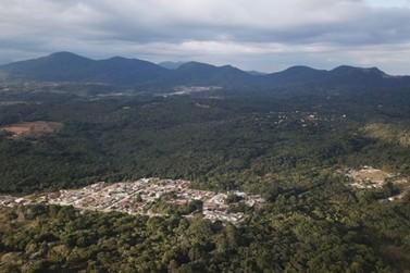 Cerca de 60% do território do Paraná é coberto pelo verde
