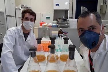 Teste rápido que detecta covid-19 ao custo de R$ 10 é criado na UFPR