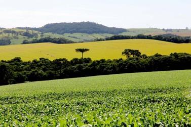 Começa hoje prazo para entrega da declaração de propriedade rural