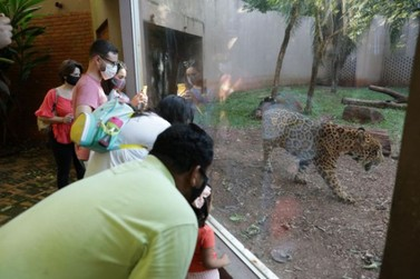 Refúgio Biológico e Ecomuseu da Itaipu reabrem na véspera do feriado prolongado