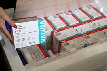 Municípios começam a receber lote com 309 mil vacinas; veja divisão regional