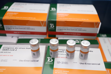 PR recebe novas doses da Coronavac e inicia logística para distribuir as vacinas