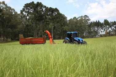 Escola de Gestão do Paraná abre inscrições para especialização em Economia Rural