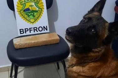 BPFron apreende casal transportando droga na PR-495, em Santa Helena