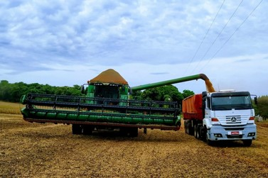 R$ 1,3 bilhões: Santa Helena continua a 6ª maior potência agrícola do Paraná