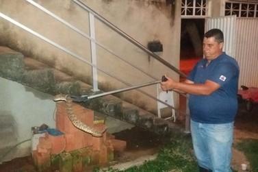 Cobra venenosa é capturada em residência de Santa Rita do Sapucaí