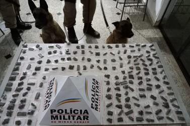 Cães da Polícia Militar encontram grande quantidade de maconha enterrada na mata
