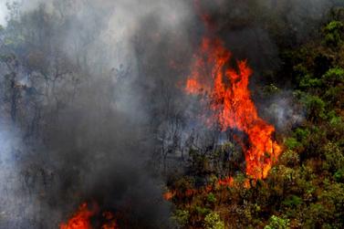 Focos de queimadas crescem na estiagem e causam prejuízos