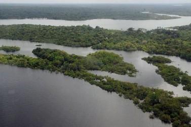 Regularização fundiária dará ao proprietário dever de preservar o meio ambiente