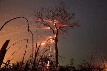 São Miguel do Guaporé entre os municípios com menor número de focos de queimadas