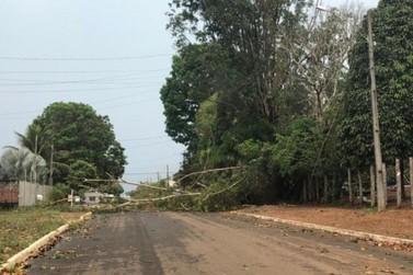 São Miguel ficara sem energia devido fortes ventos e chuva