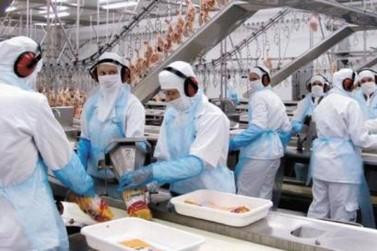 Interior fica com 90% dos 246 mil empregos criados no Paraná