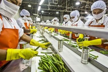 Paraná deve contratar 32 mil temporários para o fim de ano