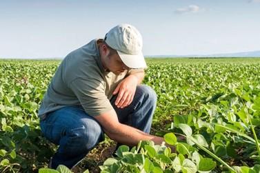 Crea promove evento em homenagem aos agrônomos em Umuarama