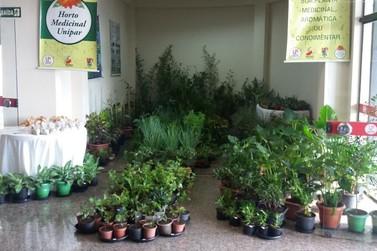 Tradicional exposição de plantas medicinais da Unipar começa nesta segunda