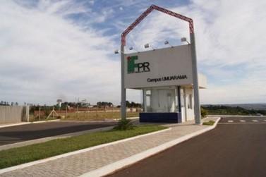 IFPR seleciona professores substitutos para o Campus de Umuarama