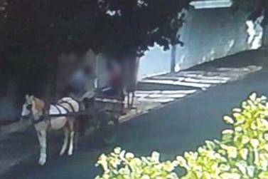 Ladrões furtam barris de chope e fogem de carroça em Paranavaí