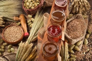 Umuarama terá curso de produção de cerveja na panela
