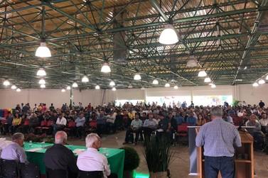 Produtores discordam de saída antecipada do Paraná como área livre de aftosa