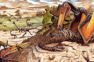 Mais uma espécie de pterossauro é descoberta em Cruzeiro do Oeste