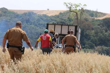 Agricultor morre após tentar conter incêndio na região de Campo Mourão